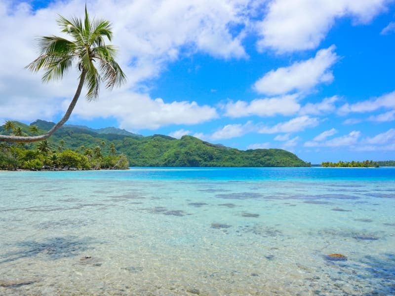 Effectuer un circuit en Polynésie pour découvrir les meilleurs de sa gastronomie