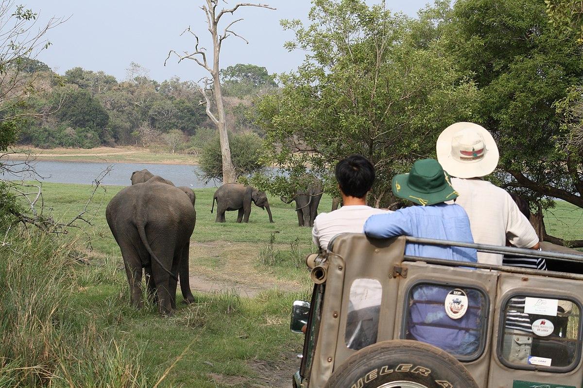 Le Sri Lanka, un pays réputé pour ses réserves naturelles