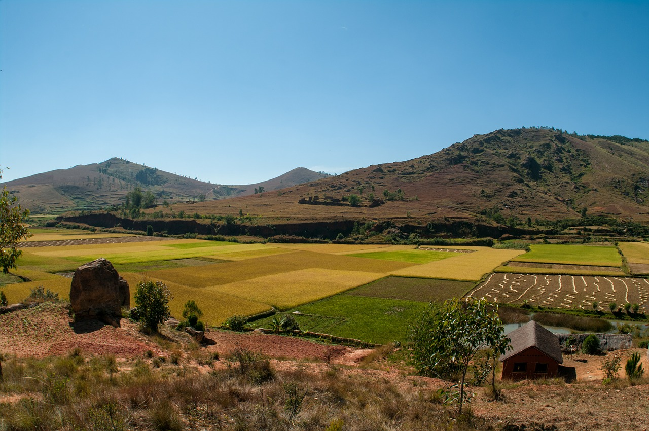 A la découverte d'un univers naturel et culturel unique en visitant Madagascar