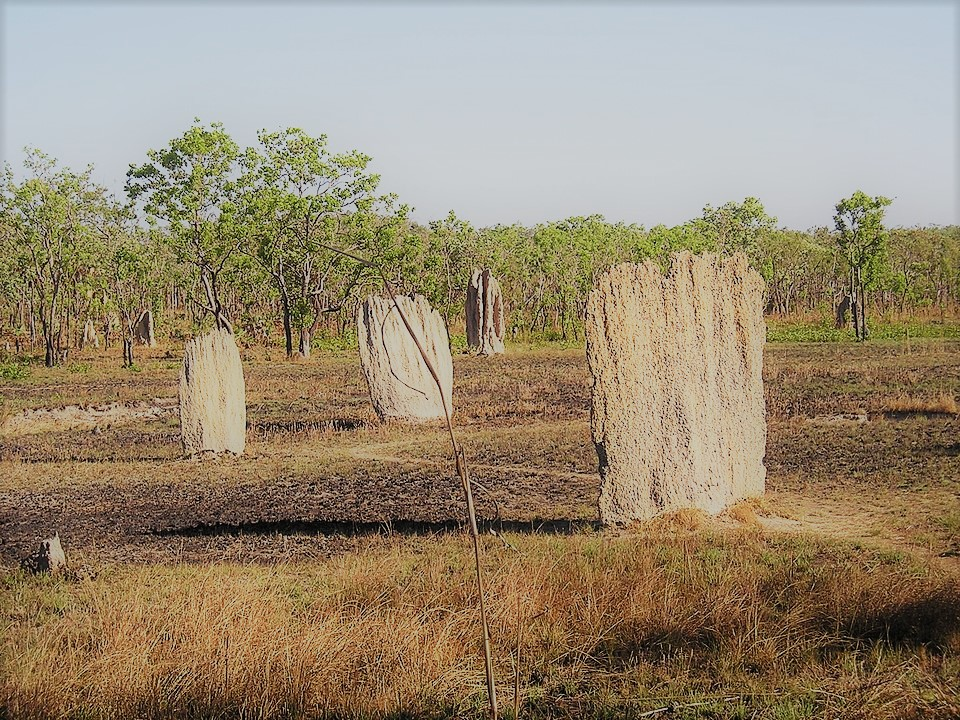 Voyage en Australie : site naturels