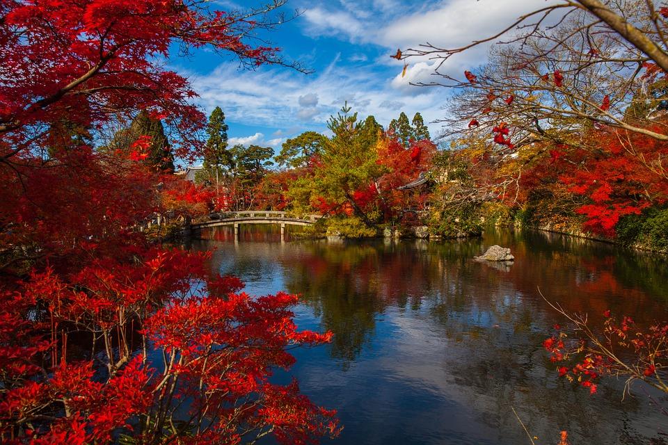 10 jardins magiques à visiter au Japon