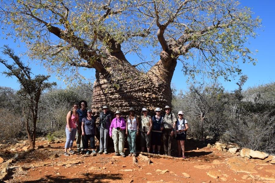 Partir à la découverte des traditions et cultures malagasy
