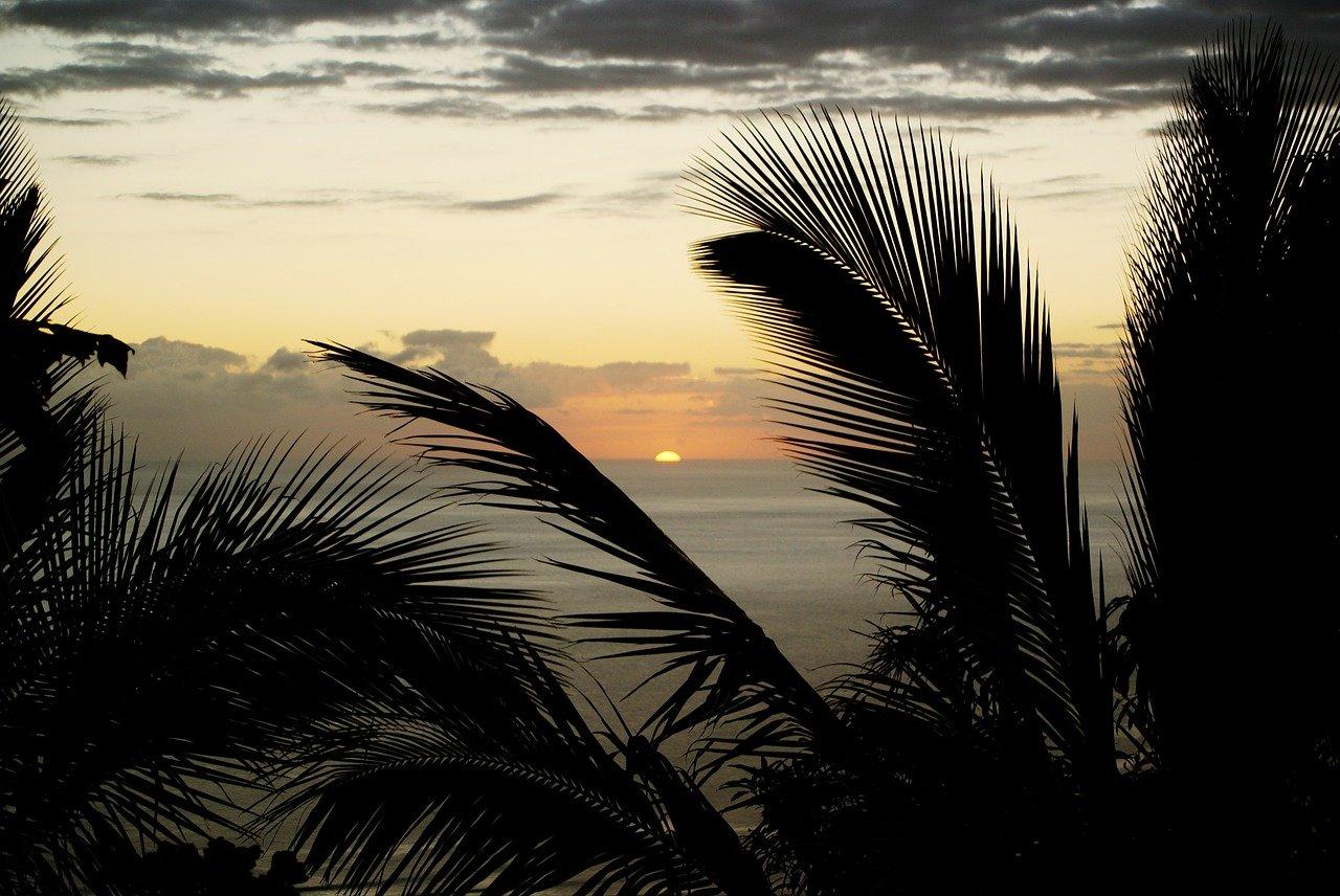 Voyage en Réunion